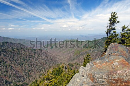 High Clouds from the Appalachian Trail Stock photo © wildnerdpix