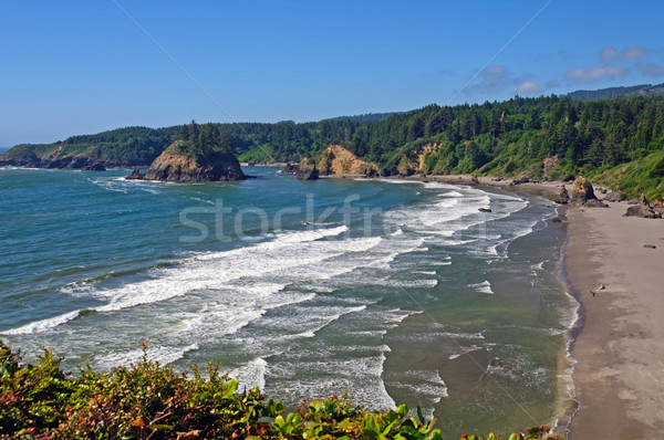 Looking Down on a Northern California Beach Stock photo © wildnerdpix