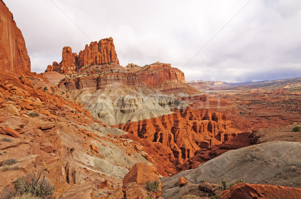 Rock Pinnacles in the American Southwest Stock photo © wildnerdpix