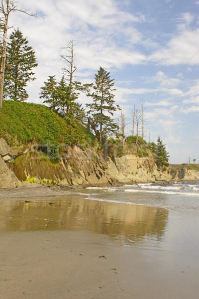 Egyenetlen sziklák napos idő világítótorony tengerpart természet Stock fotó © wildnerdpix
