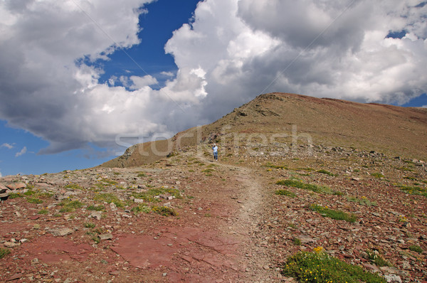 Heading down an alpine trail Stock photo © wildnerdpix