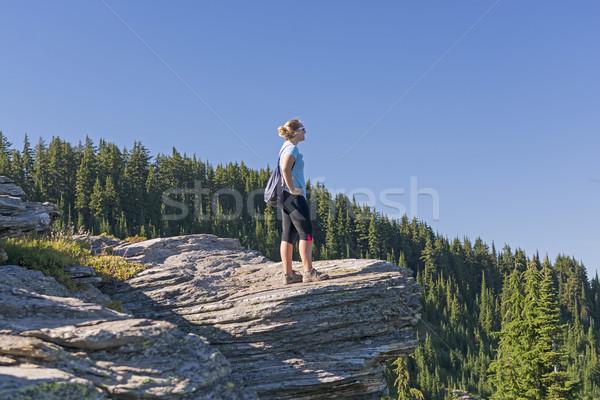 Enjoying the Mountain Sites Stock photo © wildnerdpix