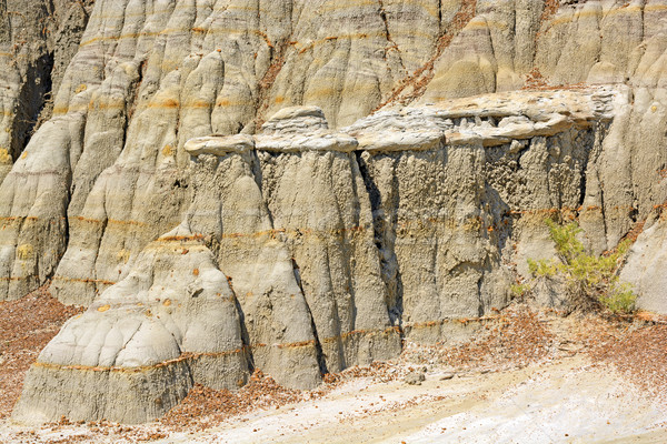 Eroded Rock in the Badlands Stock photo © wildnerdpix