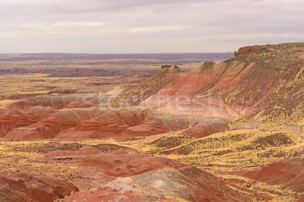 Red Desert on a Cloudy Day Stock photo © wildnerdpix