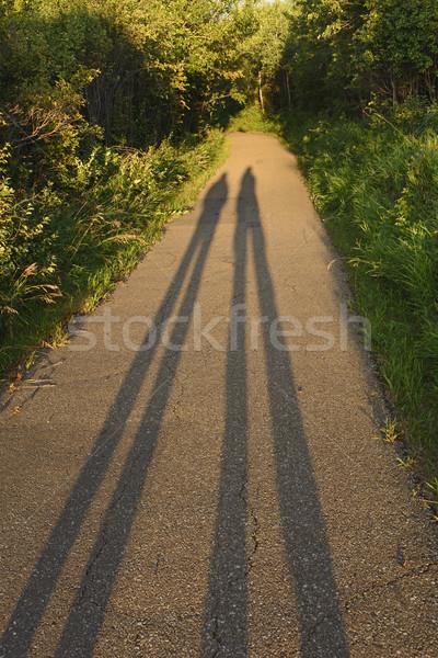 Wygaśnięcia ścieżka szlak zewnątrz Kanada Zdjęcia stock © wildnerdpix