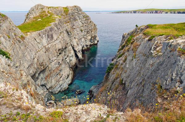 Skał nowa fundlandia mad krajobraz ocean Zdjęcia stock © wildnerdpix