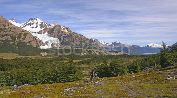 Panorama park Argentinië natuur landschap afstandsbediening Stockfoto © wildnerdpix