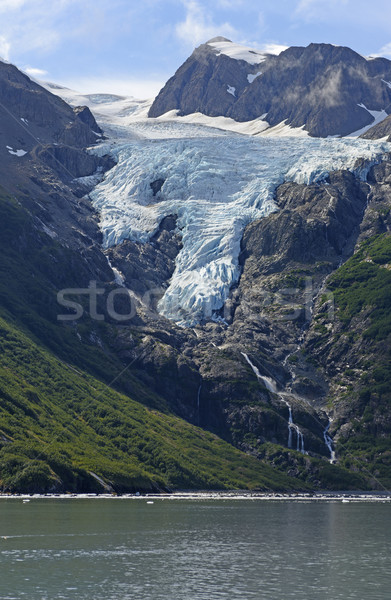 Glacier Heading to the Ocean Stock photo © wildnerdpix