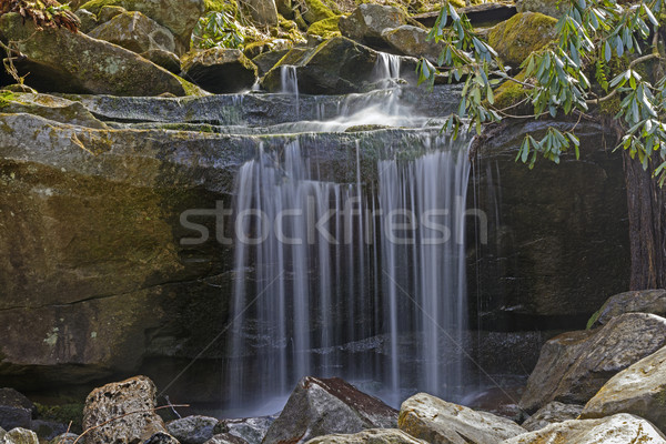 Tiny Falls in the Mountains Stock photo © wildnerdpix