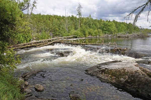 Wilderness Falls in the North Woods Stock photo © wildnerdpix