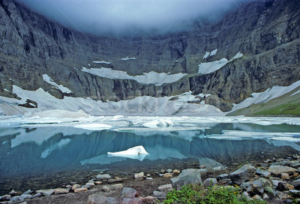 Fog, ice and water Stock photo © wildnerdpix