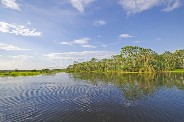 Stock photo: Sunny day on a Blackwater River