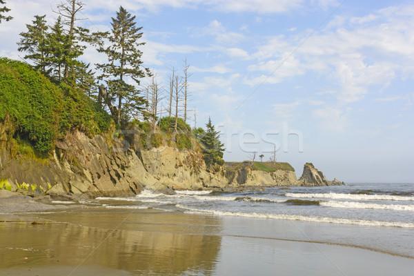 Egyenetlen sziklák óceán tengerpart világítótorony Oregon Stock fotó © wildnerdpix