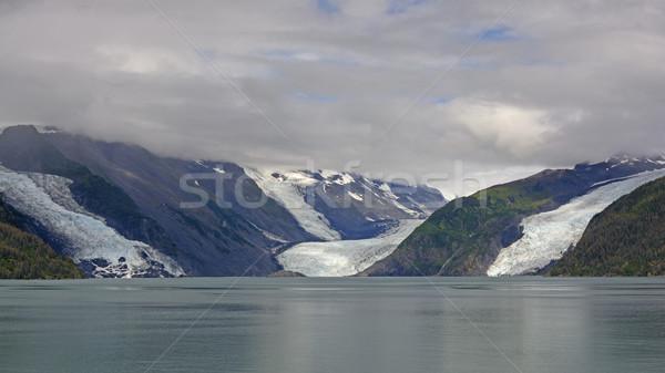 побережье ледник принц звук Аляска Сток-фото © wildnerdpix