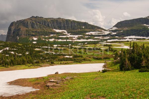 Mountain pass in summer snow Stock photo © wildnerdpix
