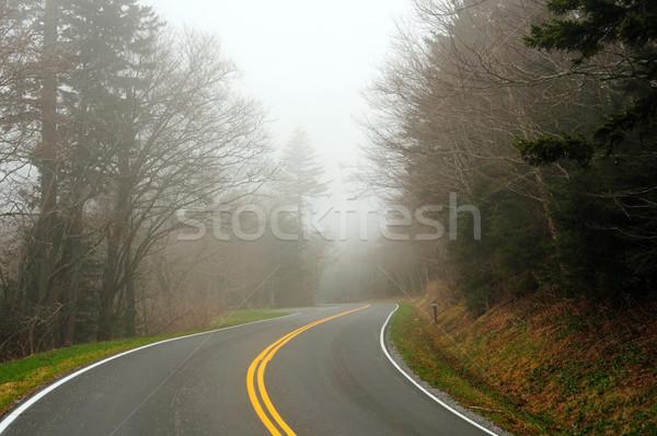 Górskich drogowego mgły dymny góry Zdjęcia stock © wildnerdpix