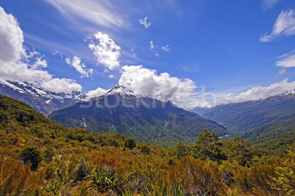 Dramatic Mountains from an Alpine Trail Stock photo © wildnerdpix