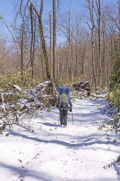 Backpacker parcours voorjaar sneeuw groot kreek Stockfoto © wildnerdpix