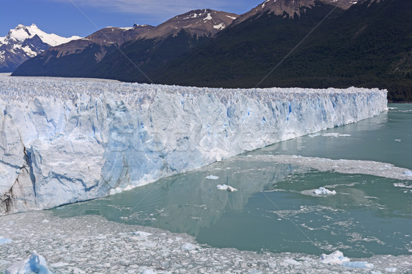 Görmek alpine buzul park su doğa Stok fotoğraf © wildnerdpix