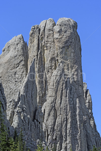 Spectacular Monolith in the Mountains Stock photo © wildnerdpix