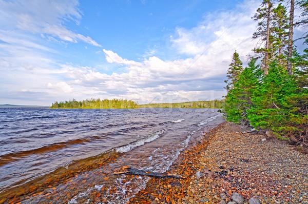 Gyengéd hullámok vadon tó tavacska föld Stock fotó © wildnerdpix