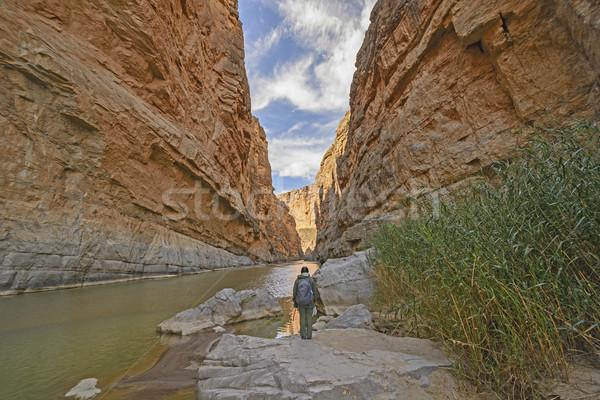 élvezi kilátás sivatag kanyon mikulás nagy Stock fotó © wildnerdpix