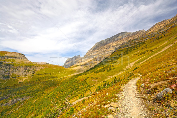 Trail into an Alpine Valley in Fall Stock photo © wildnerdpix