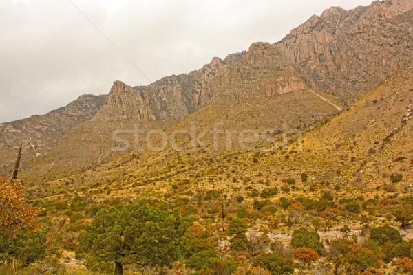 Egyenetlen hegyek magas sivatag park Texas Stock fotó © wildnerdpix
