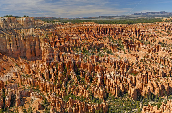 Canyon of Hoodoos Stock photo © wildnerdpix