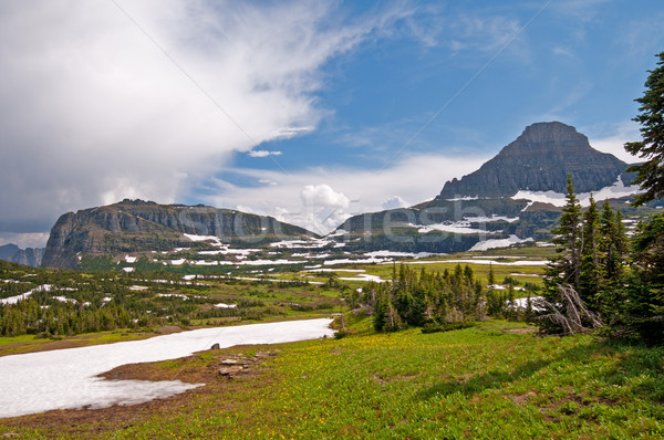 Meadows, mountains, snow, and clouds Stock photo © wildnerdpix