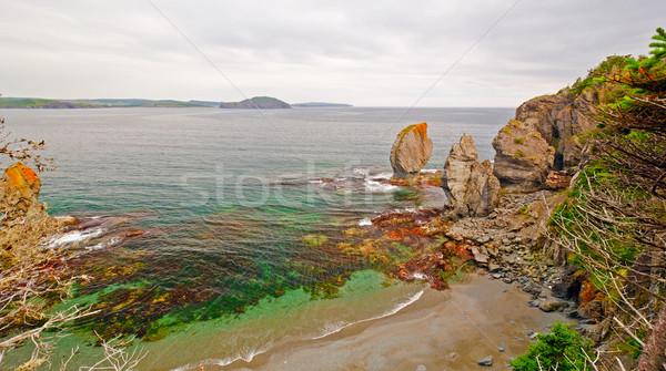 Sea Stacks on the Newfoundland Coast Stock photo © wildnerdpix