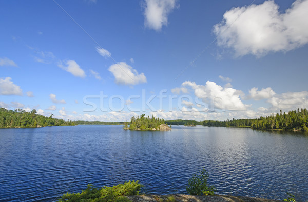 Early Morning on a North Woods Lake Stock photo © wildnerdpix