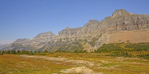 Panoramique ouest vue jardin mur Photo stock © wildnerdpix