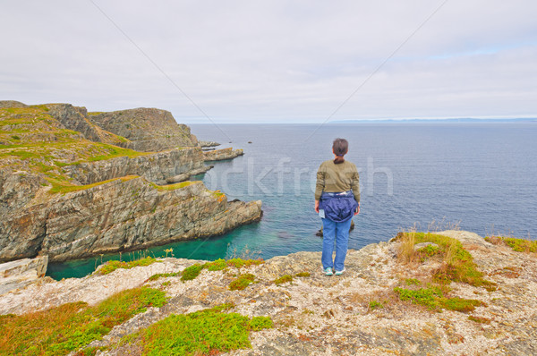 Regarder sur océan randonneur folle roches Photo stock © wildnerdpix