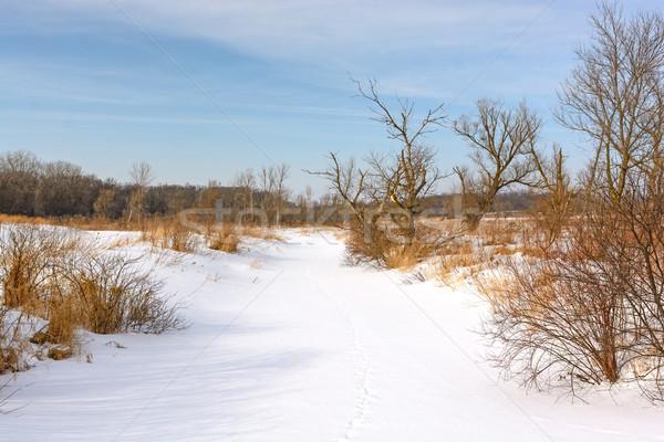 Nieve cubierto arroyo pradera morena colinas Foto stock © wildnerdpix