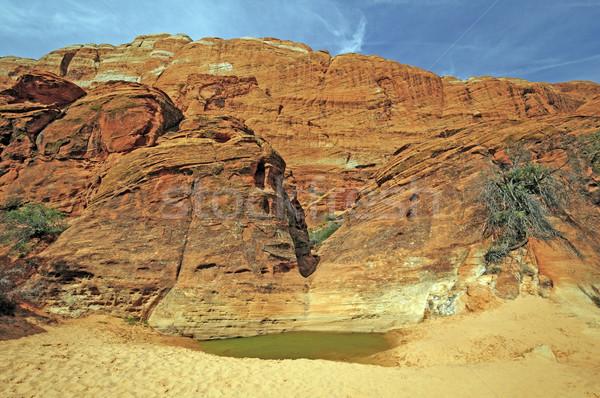 Desert Water Hole Beneath Red Rock Cliffs Stock photo © wildnerdpix