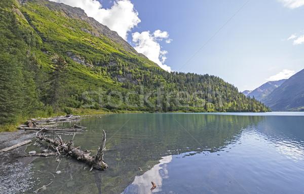 Remote Lake in the Alaskan Wilds Stock photo © wildnerdpix