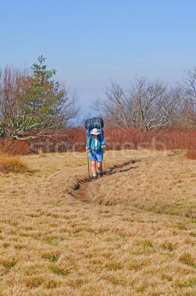 Randonnée montagne sentier Homme randonneur chauve Photo stock © wildnerdpix