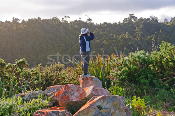 Birdwatcher trying to see the birds Stock photo © wildnerdpix