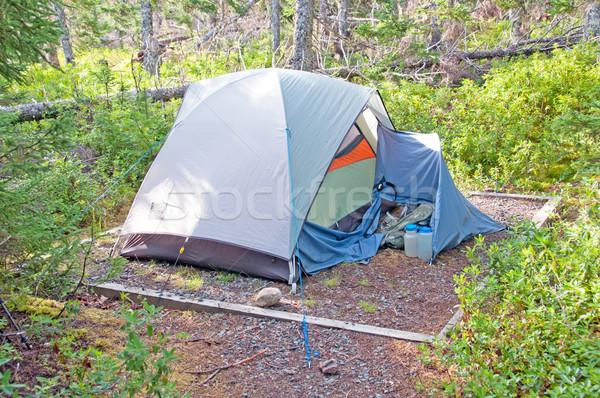 Vadon táborhely kora reggel tavacska föld erdő Stock fotó © wildnerdpix