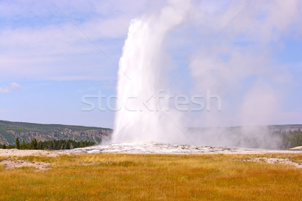 Stock photo: Old Faithful on a Fall Day