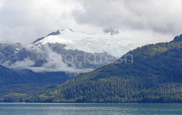 Buz bulutlar rainforest sahil prens ses Stok fotoğraf © wildnerdpix