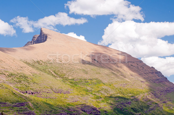 Mountain Ridge in the late Afternoon Stock photo © wildnerdpix