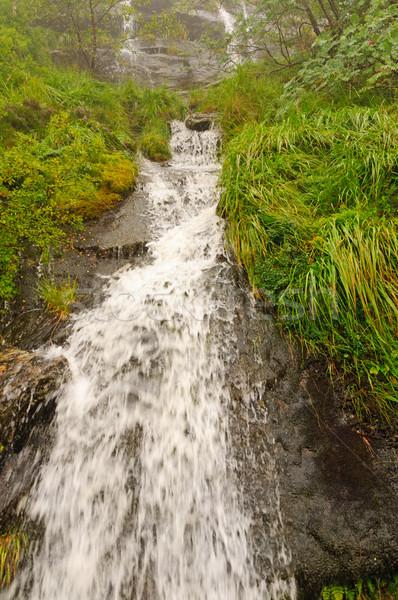 Górskich kaskada mglisty dzień charakter rock Zdjęcia stock © wildnerdpix