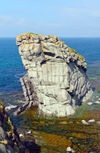 Dramatic Sea Stack on the Coast Stock photo © wildnerdpix