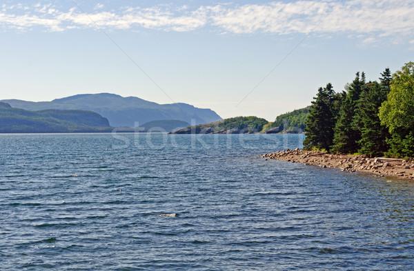 Summer day on an Ocean Inlet Stock photo © wildnerdpix