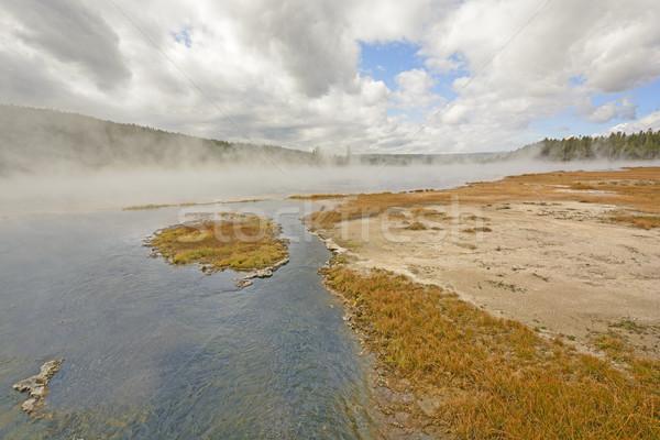 Wcześnie rano pary mgły wiosną zatoczka parku Zdjęcia stock © wildnerdpix