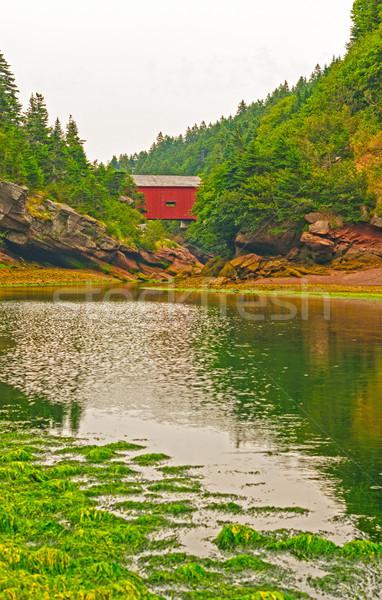 Covered bridge over a tidal stream Stock photo © wildnerdpix