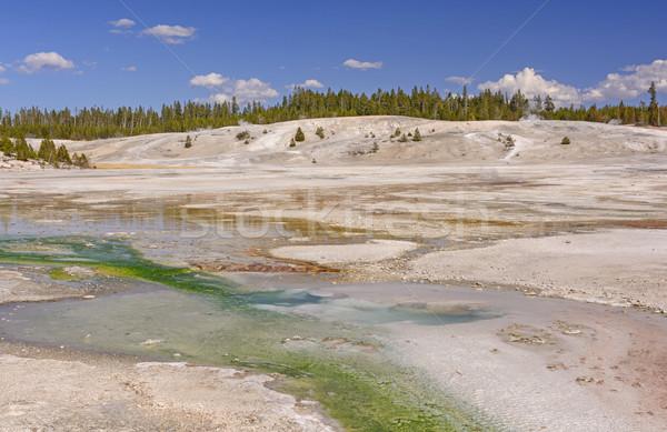 Panoráma gejzír park Wyoming tájkép távoli Stock fotó © wildnerdpix