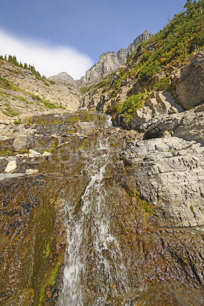 Montana corriente abajo pequeño ejecutando Foto stock © wildnerdpix